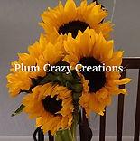 Plum Crazy Creations.jpg