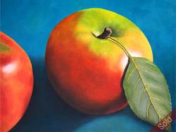 Aqua and Apple