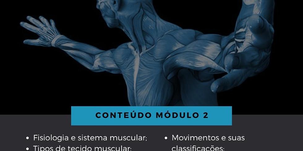 Consciência Corporal - Módulo 2