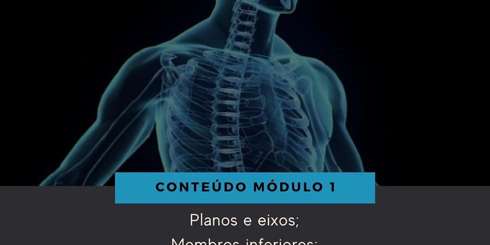 Consciência Corporal - Módulo 1 (introdutório)