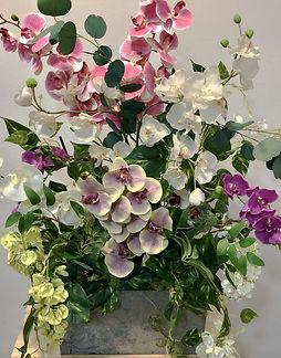 Centro orquideas.jpg