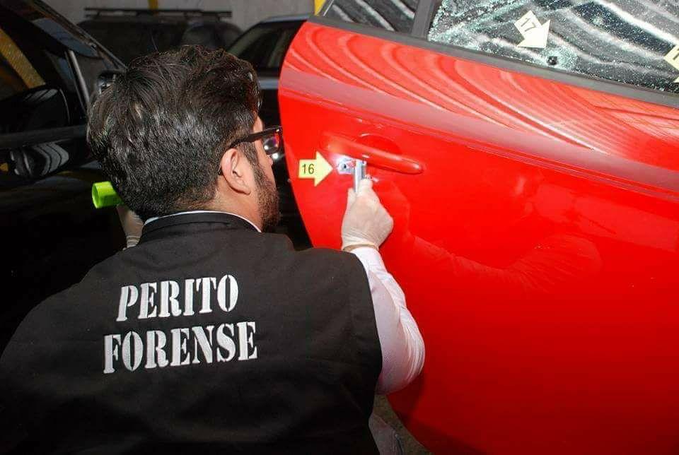 Sergio Hernández / Perito Particular