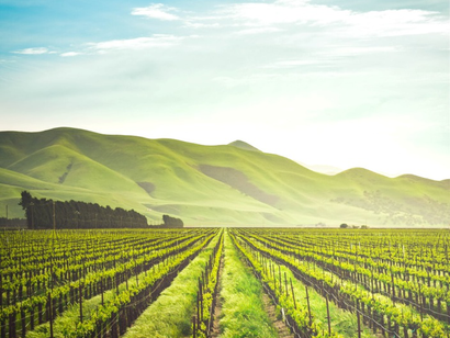 Why Santa Ynez is the Perfect Vintage Vacation Spot