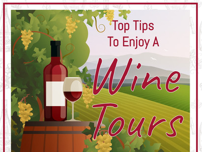 Tips To Enjoy A Wine Tour