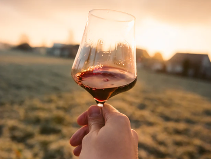 3 Bucket List Vacation Ideas for Wine Lovers