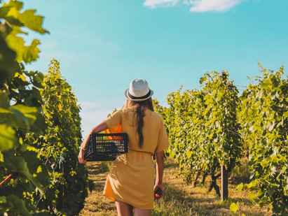 What to Wear to A Winery in Summers: Your Ultimate Style Guide