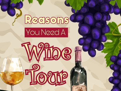 Reasons You Need A Wine Tour