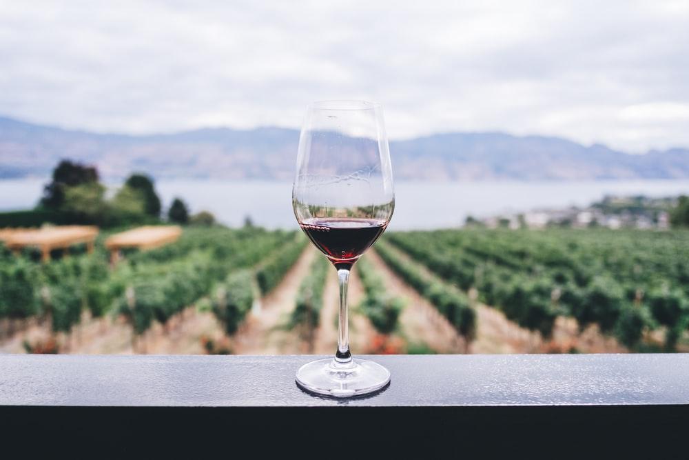 Semi-filled wine glass at a vineyard