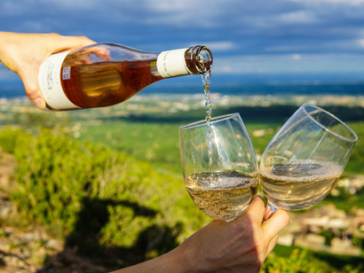 Wine-touring Tips for Beginners