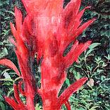붉은 꽃, acrylic on canvas,  60x60, 2019.jp