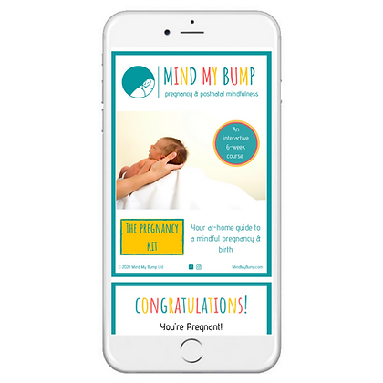 The Pregnancy Kit: Your at-home guide to a mindful pregnancy & birth (E-BOOK)