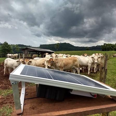 Isolar cercas, eletrificador solar 😍😍