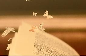 Evasions_littéraires.png