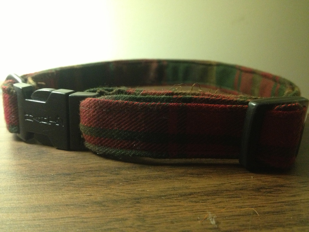 The Collar - I used the hardware from his previous worn collar.