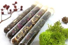 tea-organic-tea-gift-box-assorted-organi