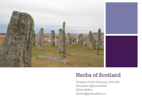 An Outlander Experience: Herbs of Scotland