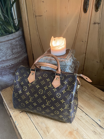 Louis Vuitton Speedy 30 - Monogram