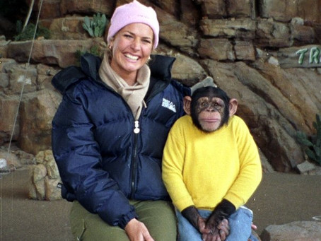On Animal Protection: An Interview with Erin Connor