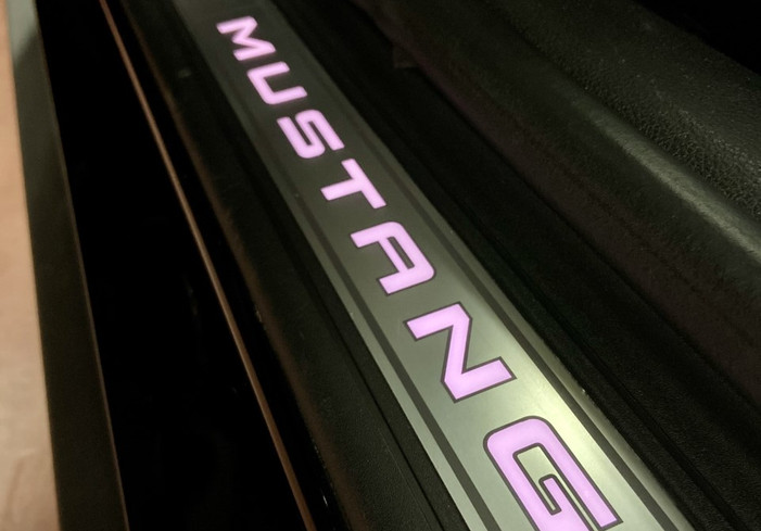 Mustang 7.jpg
