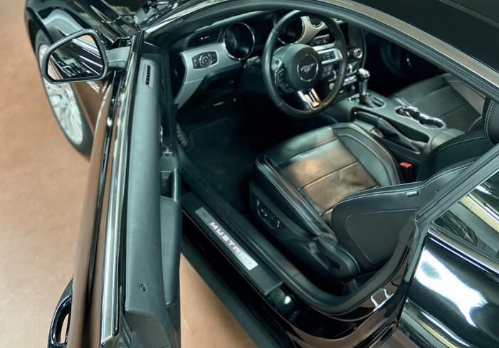 Mustang 6.jpg