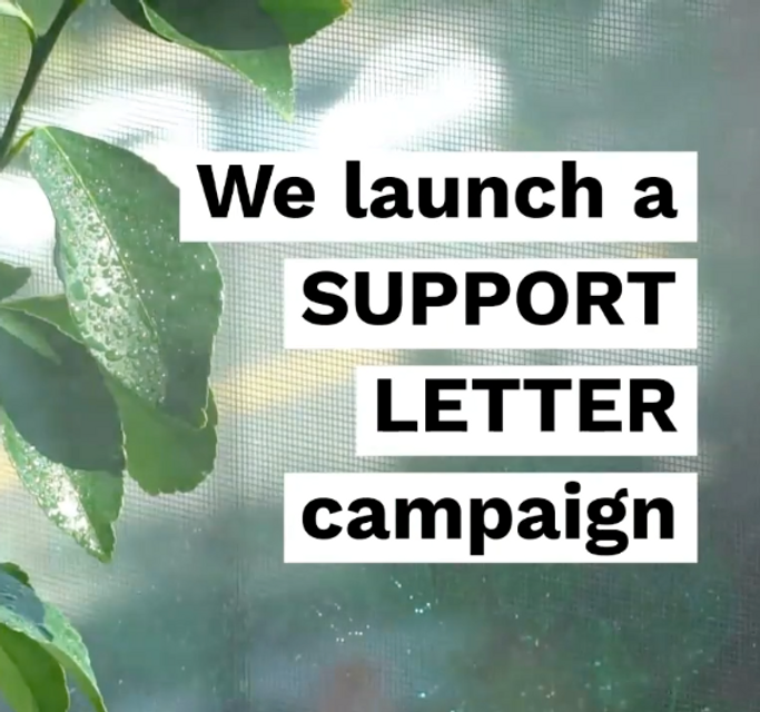 support letter campaign.png