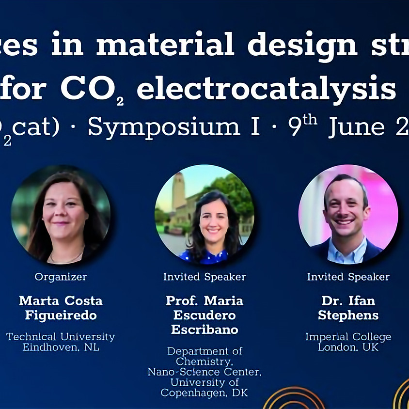 Structure-function Relationships in CO2 Electrocatalysis (CO2cat)