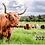 Thumbnail: 2021 Highland Cow Calendar