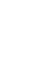 BVDC-White-Butterfly.png