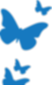 BVDC-Blue-Butterfly.png