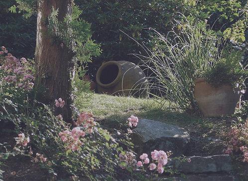 Meijer Garden & Sculpture Garden Visit - Friday