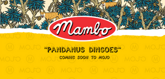 mambo dingoes teaser_fb cover.png