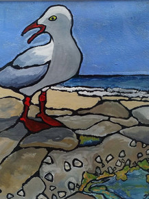 Seagull and Limpet Rockpool