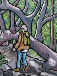 Bouddi Walking National Park