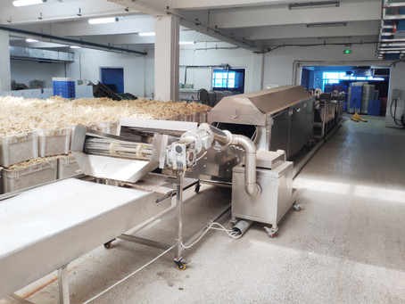 Primary processing of ginseng