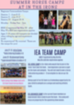 2020campflyer.png