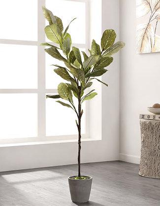 FAUX MAGNOLIA POTTED TREE - SAF