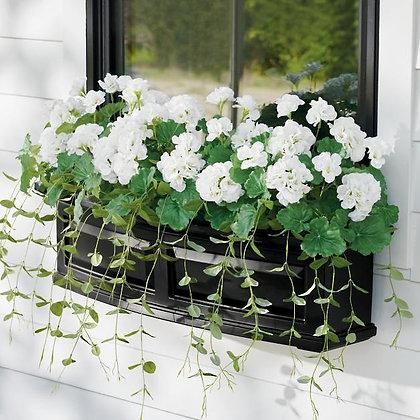 Geranium Window Box Filler - GR