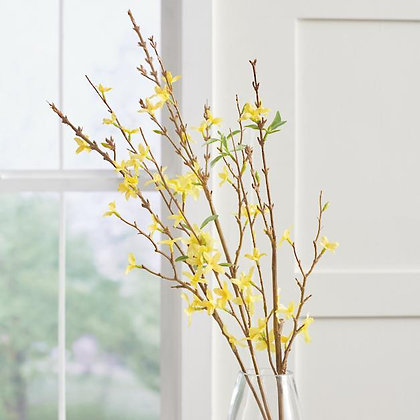 Forsythia Branch, Set of Three - GR