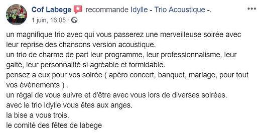 avis_comité_des_fetes_labege.JPG