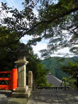 View from Mount Kurama