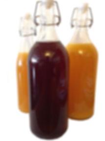 Water Kefir in Various Favours, HK Probiotics Bangkok