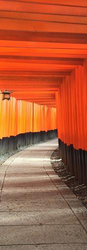 Reiki in Kyoto, Japan – Fushimi Inari Shrine