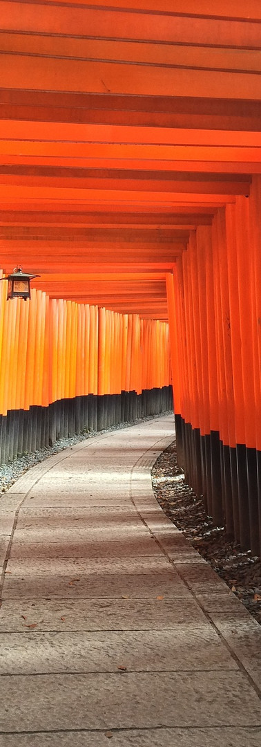 Reiki in Kyoto, Japan – Fushimi Inari Shrine