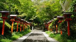 The Path to Mount Kurama