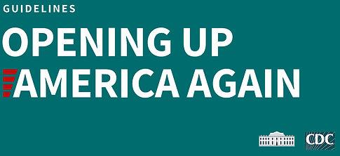 Guidelines Opening America - green.jpg