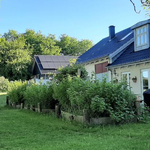Have og terrasse mod vest