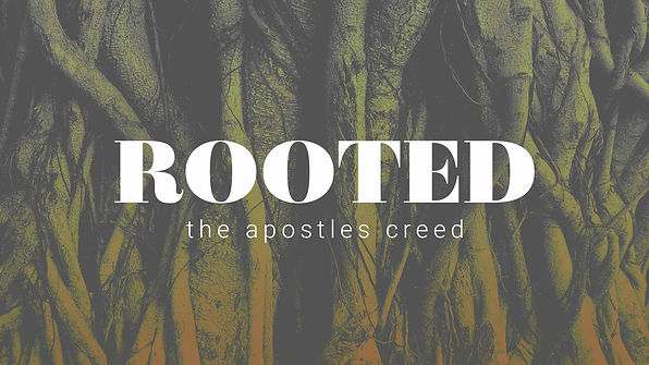 Rooted_1920x1080web.jpg