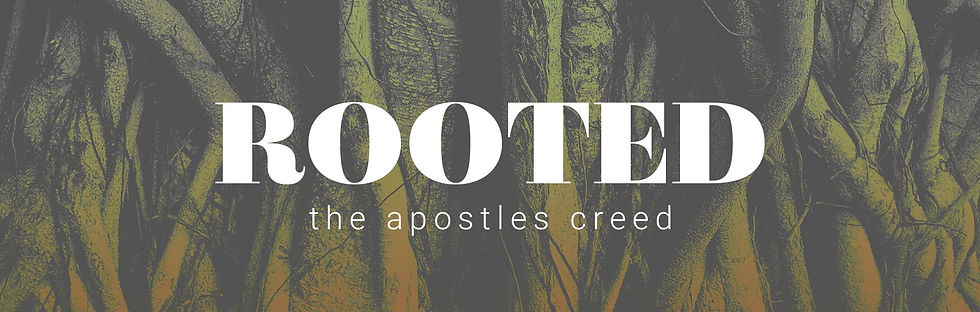 Rooted_1730x550.jpg