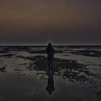 SEA AT SEA by Faya Films 5.jpg