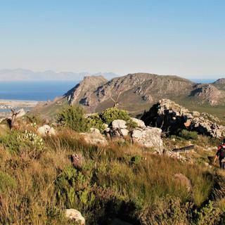 Hiking across Table Mts.